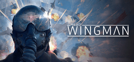 Project Wingman PC Download Free Game